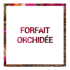 Acceuil-forfait-orchidee-hover