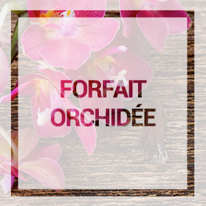 Acceuil-forfait-orchidee