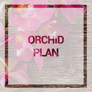 Home-orchid-plan