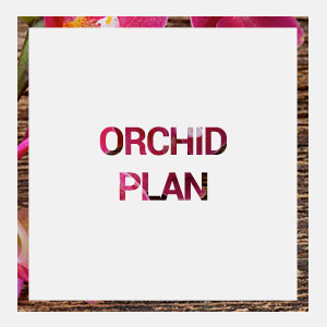home-orchid-plan-hover