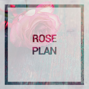 home-rose-plan