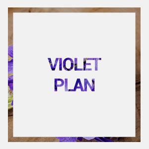 home-violet-plan-hover