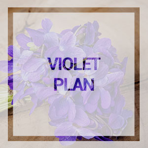 home-violet-plan
