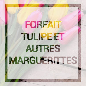 Acceuil-forfait-tulipe
