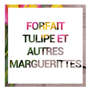 Acceuil-forfait-tulipe-hover